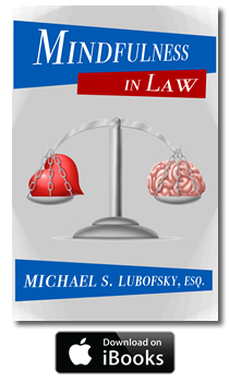 Mindfulness in Law Book